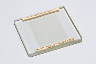 Michelson diffraction grating (replica)