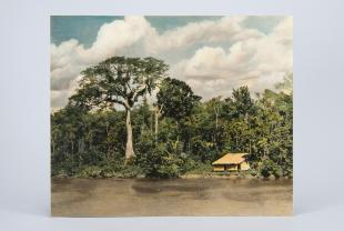colored photograph of scene on the Amazon
