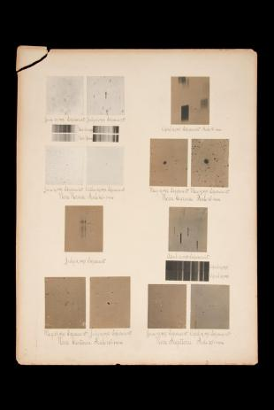 research talk illustration:  Early photograhs of Novae, 1893-1898